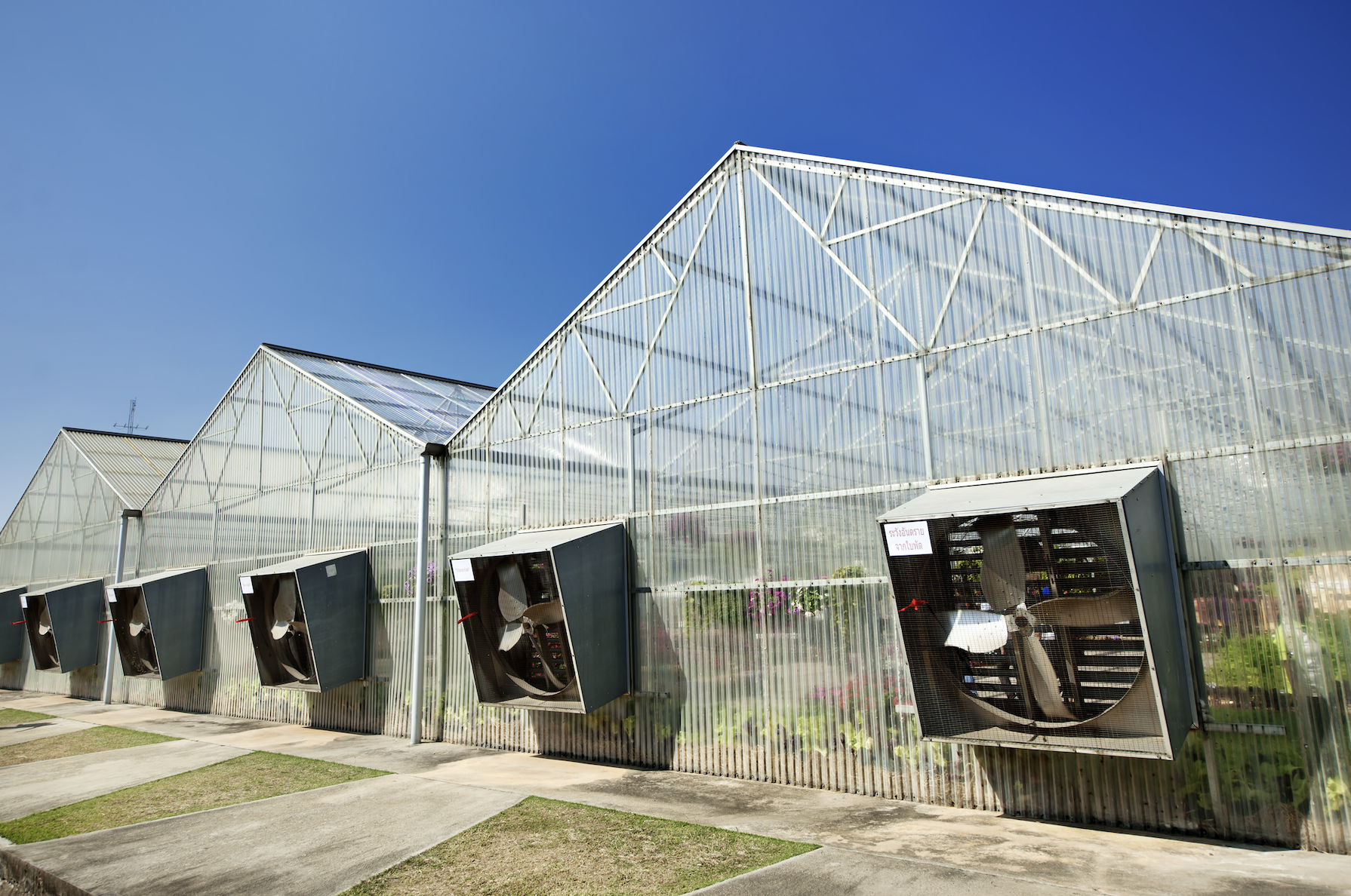 Infographic: Controlling Humidity and Climate in Greenhouses